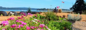 Beachcomber garden & ocean