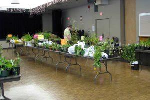 CVHS Spring Plant Sale