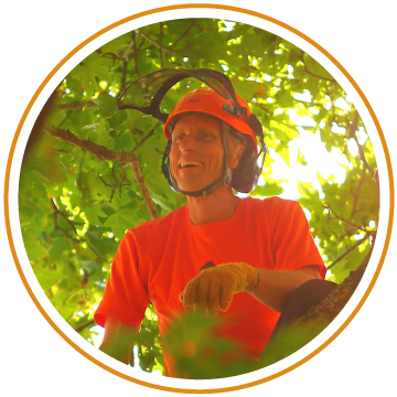 Aaron Wurts: Tree Stewardship, maintenance strategies, spiral pruning and topping