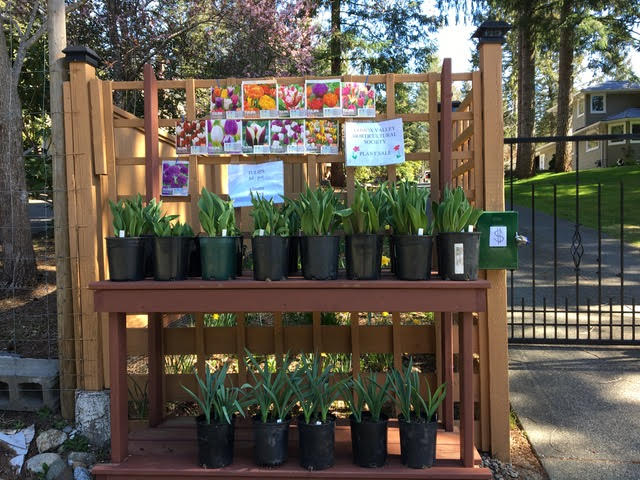 CVHS Spring Plant Stand! 5000 Willis Way, Courtenay