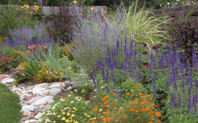 "April 19, 2021:  Linda Gilkeson – ""Resilient Gardens in a Changing Climate"""